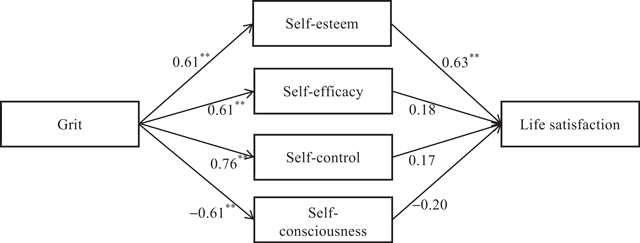 The Influence of Grit on Life Satisfaction: Self-Esteem as a